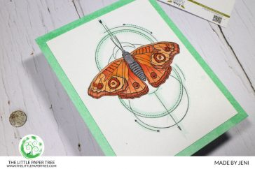 blog-Lesia-Zgharda-Butterfly-Colouring-CPD-1