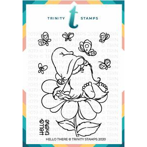 TS-Trinity-Stamps-3x4-Hello-There-Stamp-Set